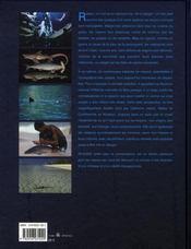 Requins ; entre peur et connaissance - 4ème de couverture - Format classique