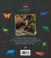 L'ours brun geant des montagnes - 4ème de couverture - Format classique