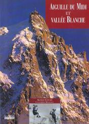 Aiguille du midi et vallee blanche - Intérieur - Format classique