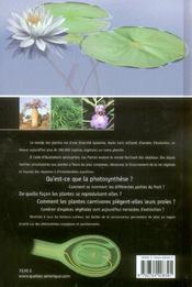 Les Plantes Comprendre Diversite Monde Vegetal - 4ème de couverture - Format classique