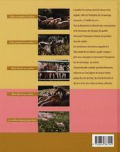 Livre Du Cochon - 4ème de couverture - Format classique