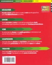 La Civilisation Du Mais - 4ème de couverture - Format classique