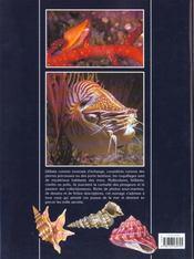 Le Guide Des Joyaux De La Mer ; Les Coquillages - 4ème de couverture - Format classique