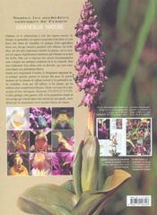Les orchidées sauvages de france - 4ème de couverture - Format classique