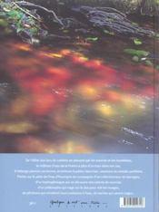 Eau d'Auvergne - 4ème de couverture - Format classique