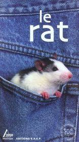 Le rat - Intérieur - Format classique