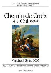 Chemin de croix au colisee ; vendredi saint 2005 - Intérieur - Format classique