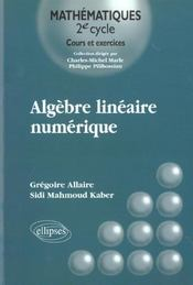 Algebre Lineaire Numerique Cours Et Exercices - Intérieur - Format classique