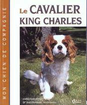 Cavalier King Charles - Intérieur - Format classique