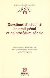 Questions D'Actualite De Droit Penal Et Procedure - Intérieur - Format classique