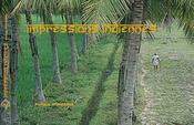 Impressions indiennes - Intérieur - Format classique
