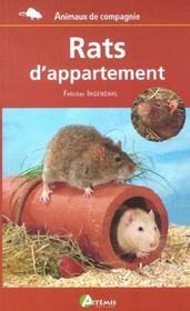 Rats D Appartement - Intérieur - Format classique