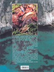 Calanques ; vertiges en mediterranee - 4ème de couverture - Format classique