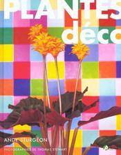 Plantes Deco - Intérieur - Format classique