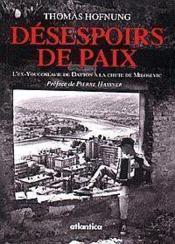 Desespoirs De Paix Lex-Yougoslavie De Dayton A La Chute De Milosevic - Couverture - Format classique
