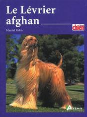 Le lévrier afghan - Intérieur - Format classique