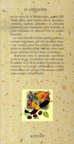 Le grenadier, le caroubier, le jujubier, le pistachier et l'arbousier - 4ème de couverture - Format classique