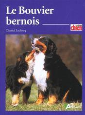 Le bouvier bernois - Intérieur - Format classique