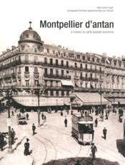 Montpellier d'antan ; à travers la carte postale ancienne  - Sarah Finger