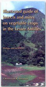 Illustrated guide of insects guide of insects and mites on vegetable crops in the Lesser Antilles - Couverture - Format classique