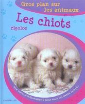 Gros Plan Sur Les Animaux 05. Les Chiots Rigolos - Intérieur - Format classique