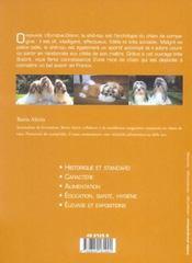 Shih-Tzu (Le) - 4ème de couverture - Format classique