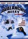 DVD & Blu-ray - Avalanche Alley