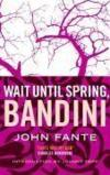 Livres - Wait Until Spring, Bandini