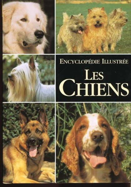 Vente Livre :                                    Les Chiens, Encyclopedie Illustree                                      - Esther Verhoef-Verhallen