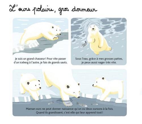 Le Pôle Nord (Club Voyage Autour du Monde)