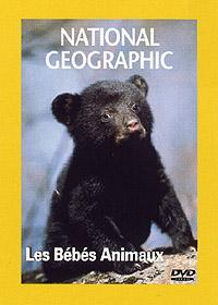 Les bébés animaux affiche