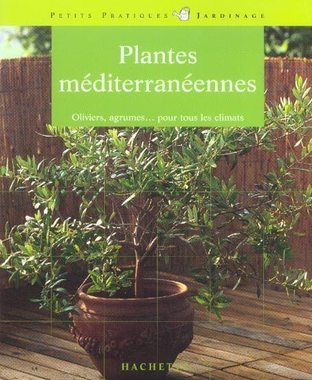 Livre plantes mediterraneennes oliviers agrumes for Plante pour tous