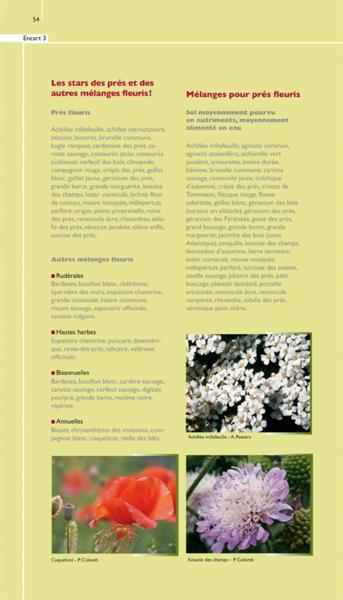 livre pr s fleuris et autres m langes de fleurs sauvages alain peeters. Black Bedroom Furniture Sets. Home Design Ideas