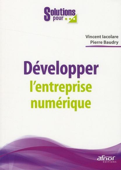 Développer l'entreprise numerique.