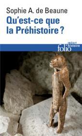 Qu'est-ce que la préhistoire ? - Couverture - Format classique