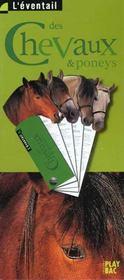 Les chevaux et les poneys - Intérieur - Format classique