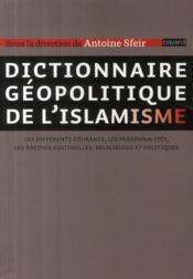 Dictionnaire géopolitique de l'islamisme ; les différents courant, mes personnalités, les racines cuturelles, religieuses et politiques - Couverture - Format classique