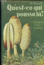 Qu'Est-Ce Qui Pousse La? Champignons Baies Simples - Couverture - Format classique