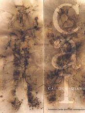 Cai guo-qiang - Intérieur - Format classique