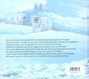 Nanuark - 4ème de couverture - Format classique