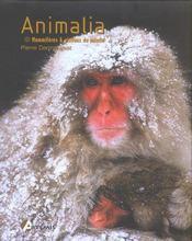Animalia ; Mammiferes Et Oiseaux Du Monde - Intérieur - Format classique