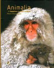 Animalia ; Mammiferes Et Oiseaux Du Monde - Couverture - Format classique