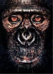 James and other apes - Couverture - Format classique