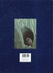 King Kong - 4ème de couverture - Format classique