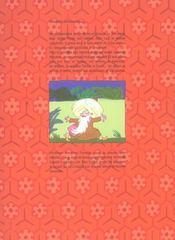 Les fabuleuses aventures de nasr eddin hodja - 4ème de couverture - Format classique