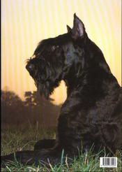 Splendeurs du chien - 4ème de couverture - Format classique