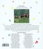 Le cheval sauvage - 4ème de couverture - Format classique