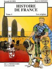 Histoire de France t.1 ; les origines - Couverture - Format classique