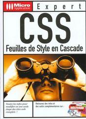 Css - Intérieur - Format classique