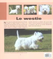 Westie - 4ème de couverture - Format classique